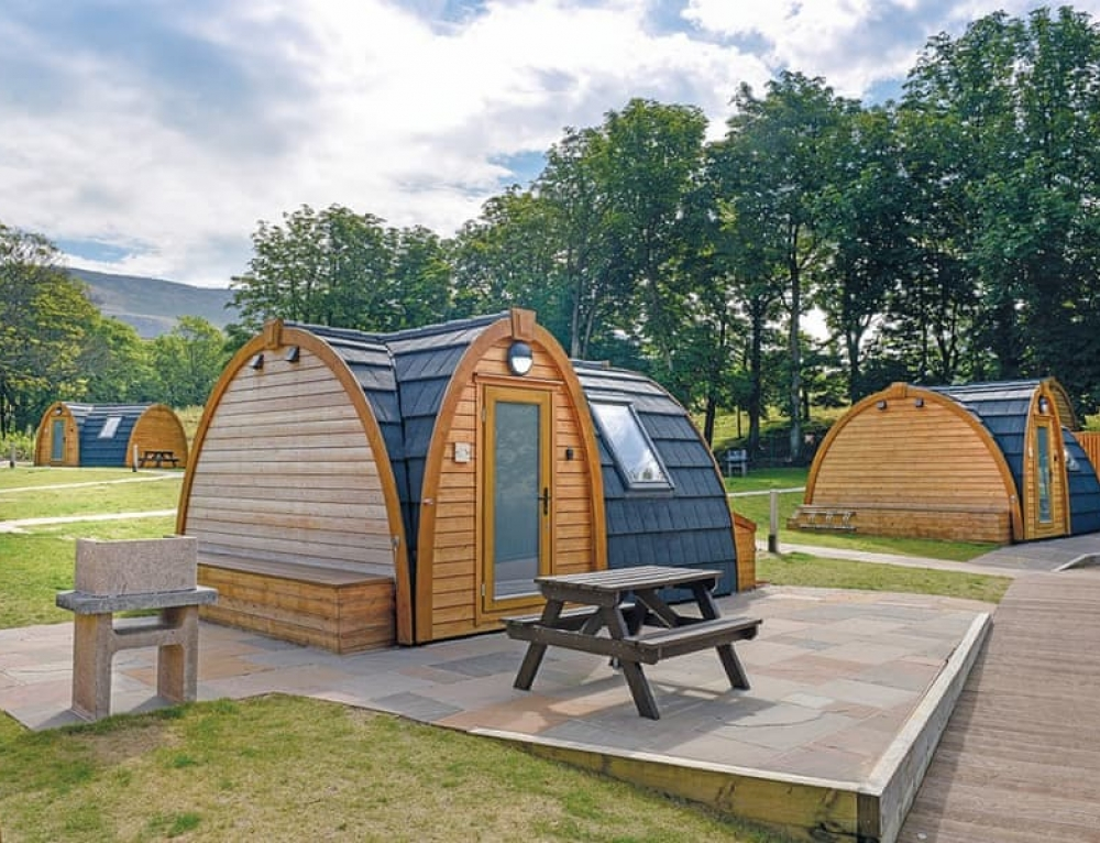 🌻🌺Luxury UK Glamping Pod – Only £137 per person🌺 🌻